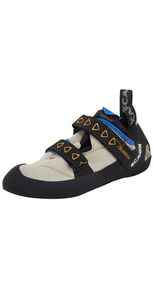 Scarpa Velocity Climbing Shoes Men lightgray/royal blue